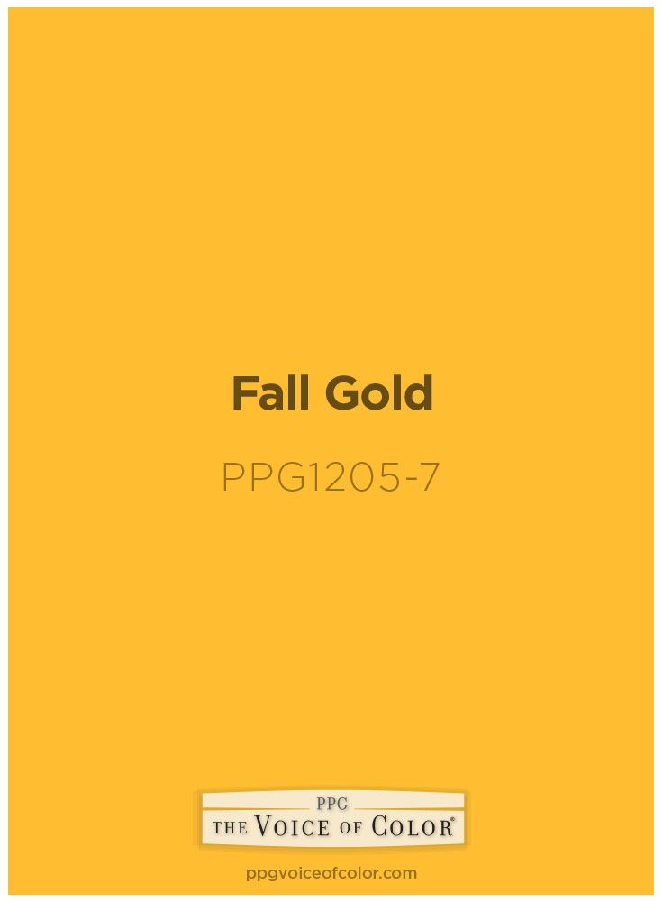 46 best images about halloween paint chip diy crafts on - Popular gold paint colors ...