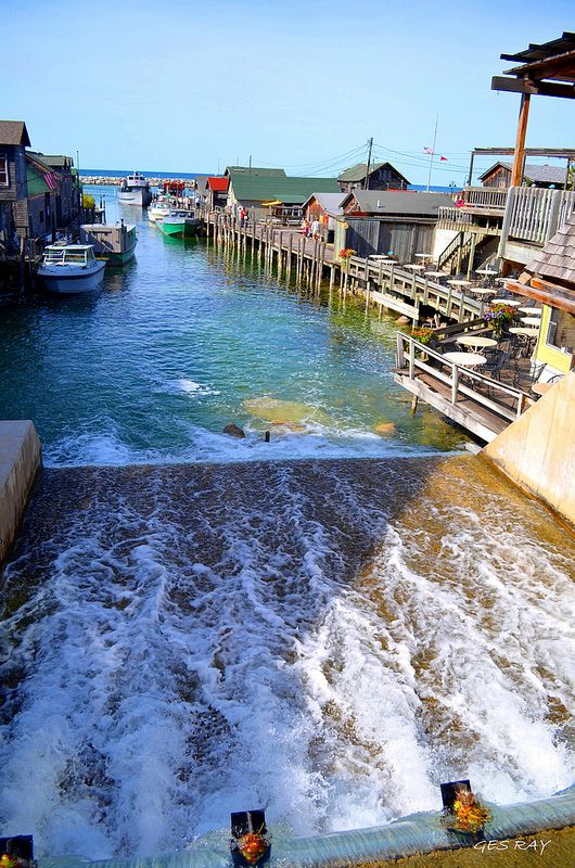 1000 images about my flickr on pinterest places we and for Fish town usa