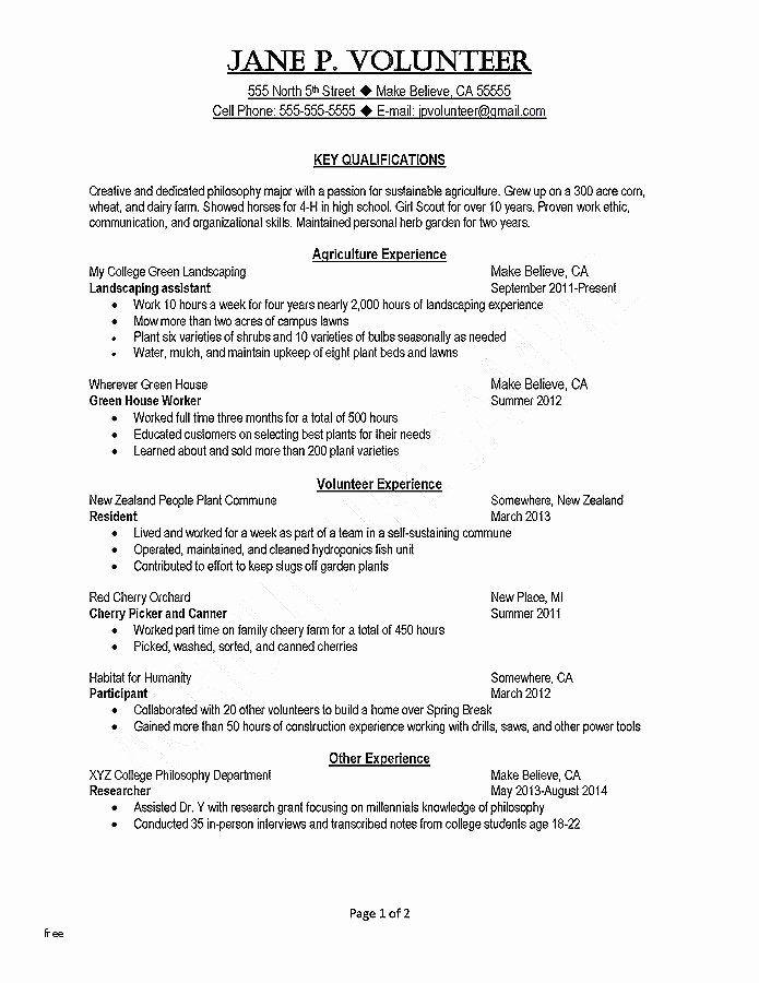 resume template word 2013 elegant top 10 resume templates