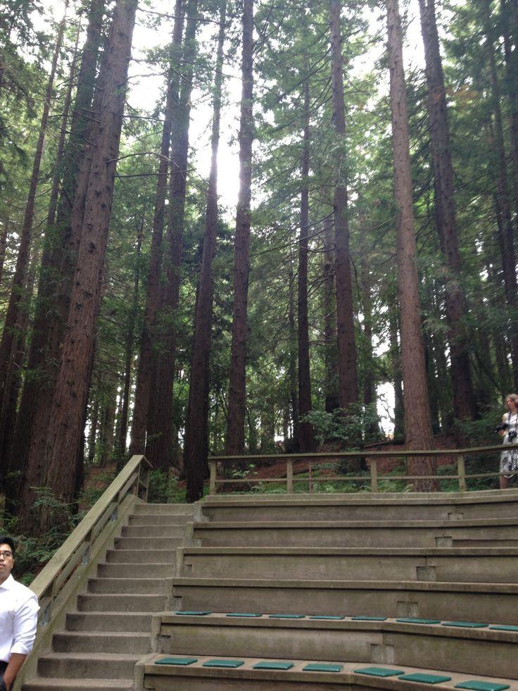 UC Berkeley Botanical Gardens Botanical gardens, Garden