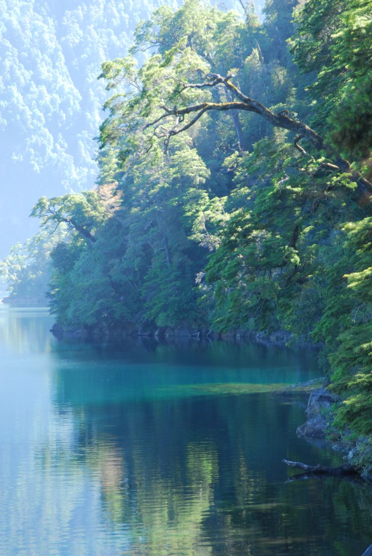 Lago Pirihueico Sur de Chile.
