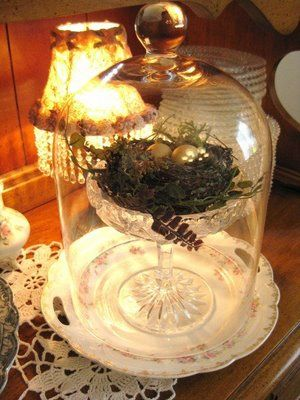 I love the way the nest is elevated in a glass dish before being placed in the cloche.