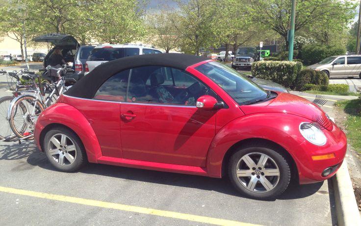 41 Best Images About Vw Beetles On Pinterest Volkswagen
