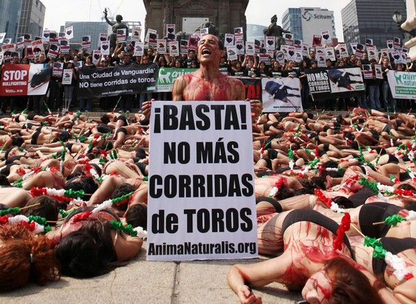 Animal rights' activists, some  on the ground with barbed darts taped to their backs,  stage a protest against bullfighting in Mexico city, Sunday, Feb. 5, 2012.  The sign reads in Spanish 'Stop! No more bullfighting'.(AP Photo/Christian Palma)