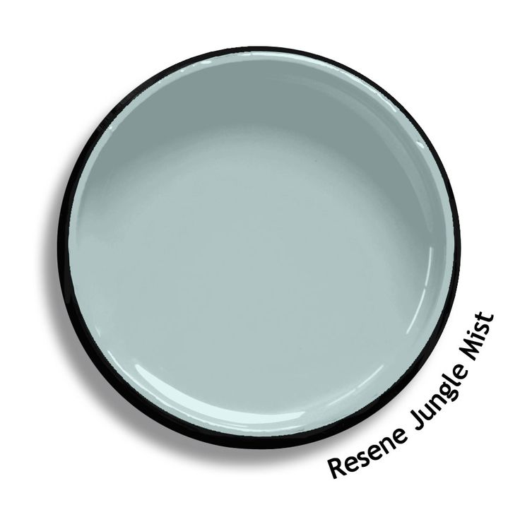 Resene Jungle Mist is a Gustavian grey blue, simple and serene. From the Resene BS5252 colours collection. Try a Resene testpot or view a physical sample at your Resene ColorShop or Reseller before making your final colour choice. www.resene.co.nz