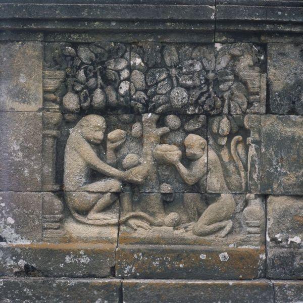 File:COLLECTIE TROPENMUSEUM Reliëf op de Borobudur TMnr 20027076.jpg