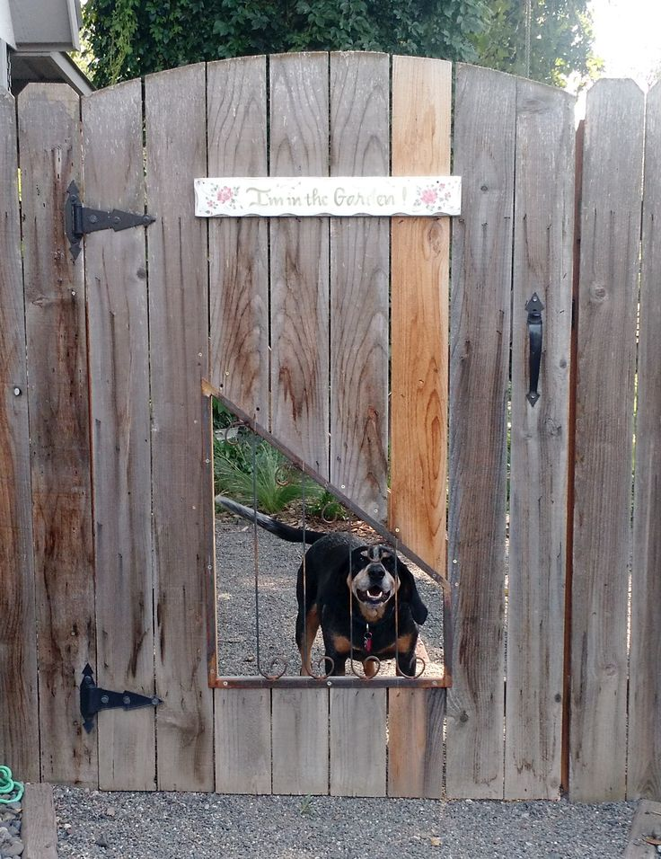 Built this wrought iron window for my dogs to be able to see out of the back yard.