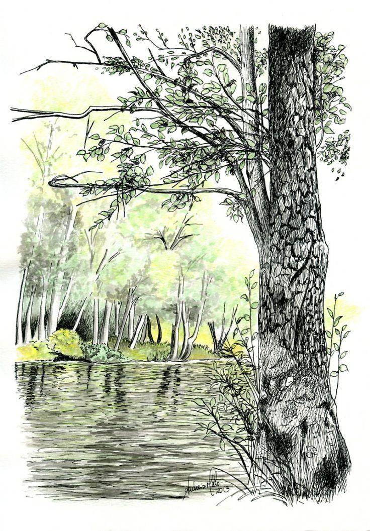 """Landscape of River """"Alfusqueiro"""" - Author: Andreia Melo"""