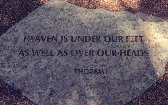 Quote about heaven Henry David Thoreau