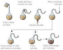 http://www.escuelapedia.com/experimento-de-louis-pasteur/