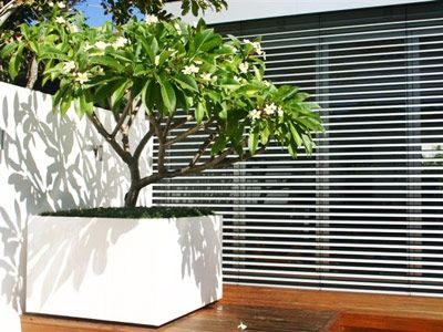 large rectangular planter boxes brisbane perth for trees planters