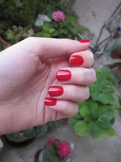 Ladybug: 239 Rosso Vermiglio - Kiko