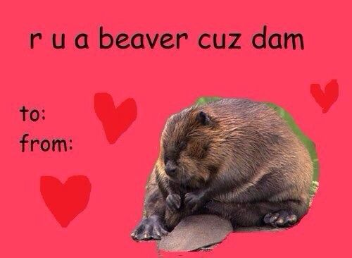 Tumblr Valentineu0027s Card 4