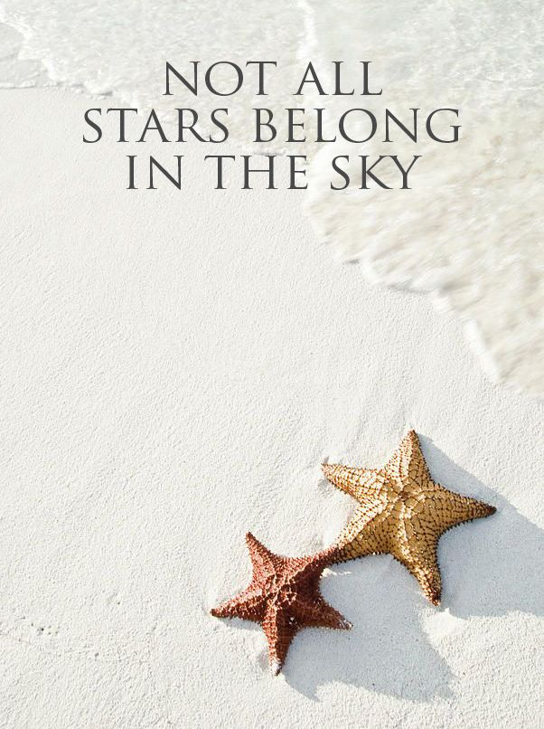 Not all stars belong in the sky... #Caribbean