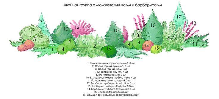 Участок в Глаголево парке. Состав ландшафтного проекта. | Михайлова Евгения - Ландшафтный дизайнер
