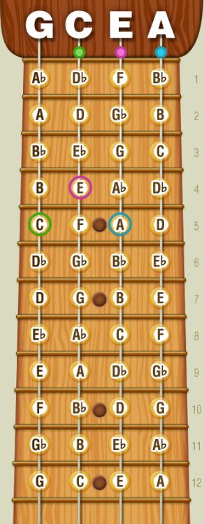 """""""Real"""" Notes On Your Ukulele Fretboard (Diagram) I'm still strumming chords (badly), but I'm looking forward to reading music – and I'd prefer skipping tablatures altogether as these seem, well, redundant. There's a known way of writing music, used..."""