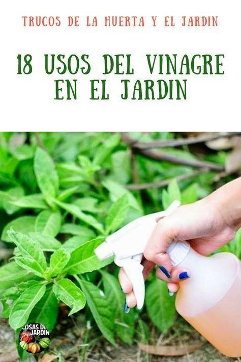 18 formas de usar vinagre en el jardin y en el huerto