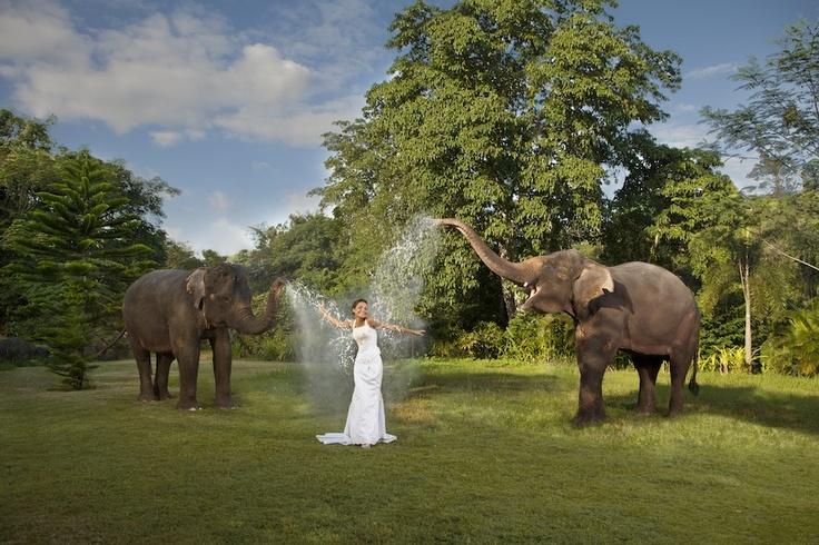Trash The Dress, Dream Weddings Bali Style magazine, Issue 3