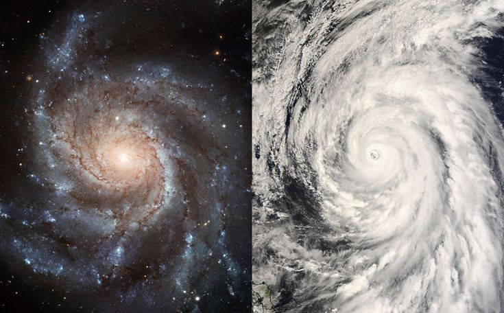 Logarithmic Spirals. Uncomfortably close Typhoon Rammasun (right) and 25 million light-year distant galaxy M101 don't seem to have much in common. But they do look amazingly alike: each with arms exhibiting the shape of a simple and beautiful mathematical curve.
