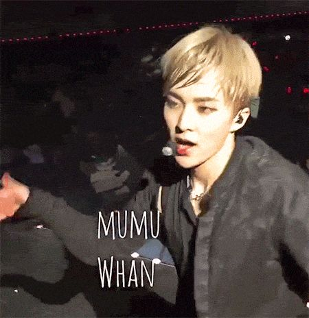 "Gif of EXO's Xiumin and his ""seductive"" dance towards fans. / Instiz"