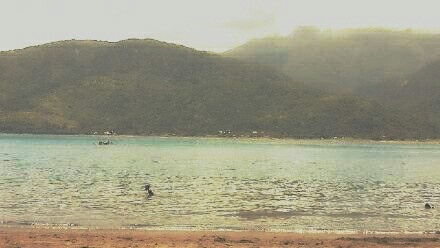 Balute Island, Real Quezon