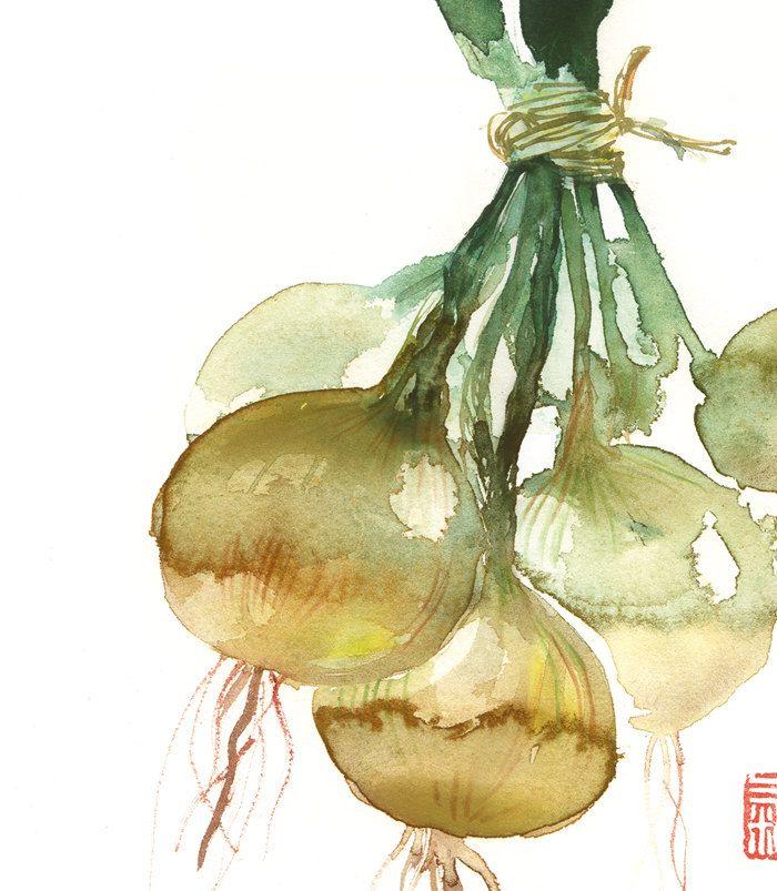Vegetable print Onion poster watercolor Botanical Kitchen art Food illustration Home decor Farmers market Green leaves. $25.00, via Etsy.