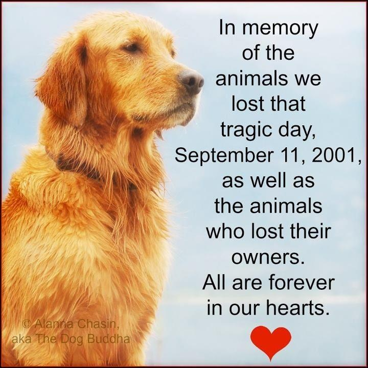 September 11, 2001 - Forever in our Hearts!