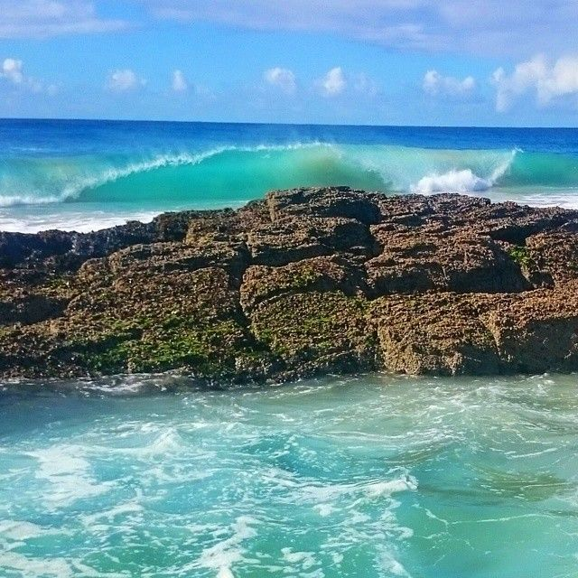 Posted by @dianatreadwell Taken at Snapper Rocks