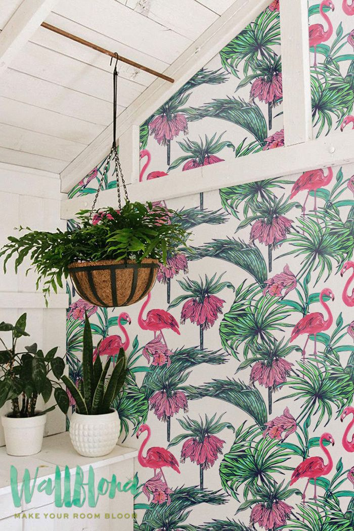 flamingo u0026 bismarck wallpaper