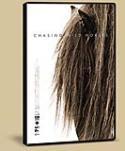 The Sable Island Horses + Roberto Dutesco
