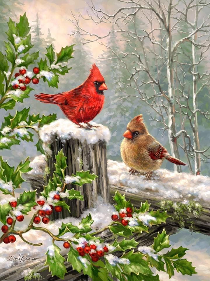 Cardinals on a fence in the snow with holly berries.
