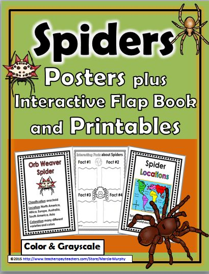 SPIDERS - Posters, Interactive Flap Book, and lots of Printables