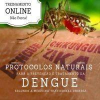 SAÚDE E BEM ESTAR (FAMÍLIA FELIZ): Treinamento Online Sobre a Dengue - Como Prevenir ...