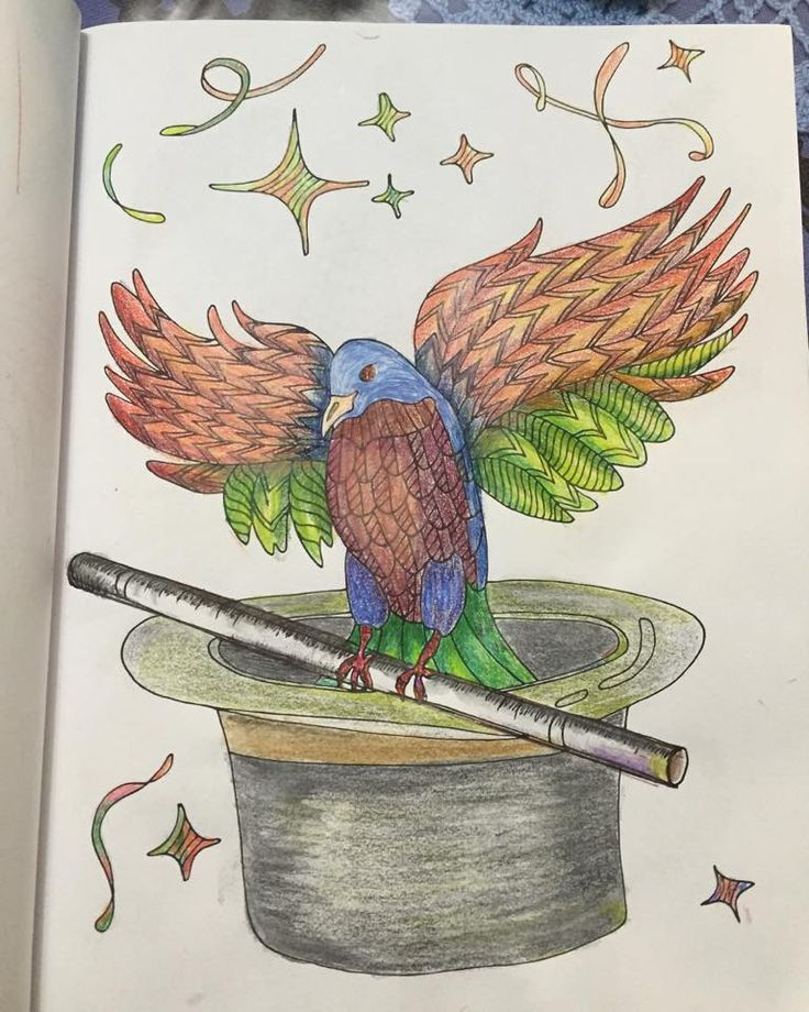 Finished Coloring Page From Fantastic Birds To Color A Bird Book For Adults