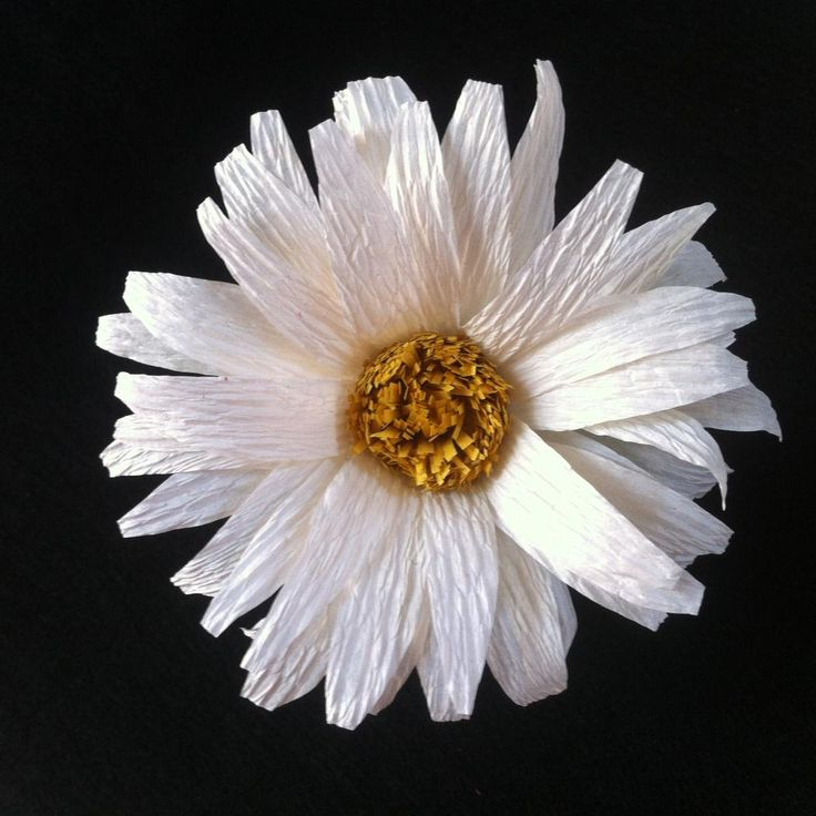 Make this beautiful daisy flower using crepe paper streamers. You can get these streamers at the dollar stores or craft stores. They are very inexpensive. The instructions are simple and you only need a few supplies to get started. Materials crepe paper streamers soft wire wire glue scissors