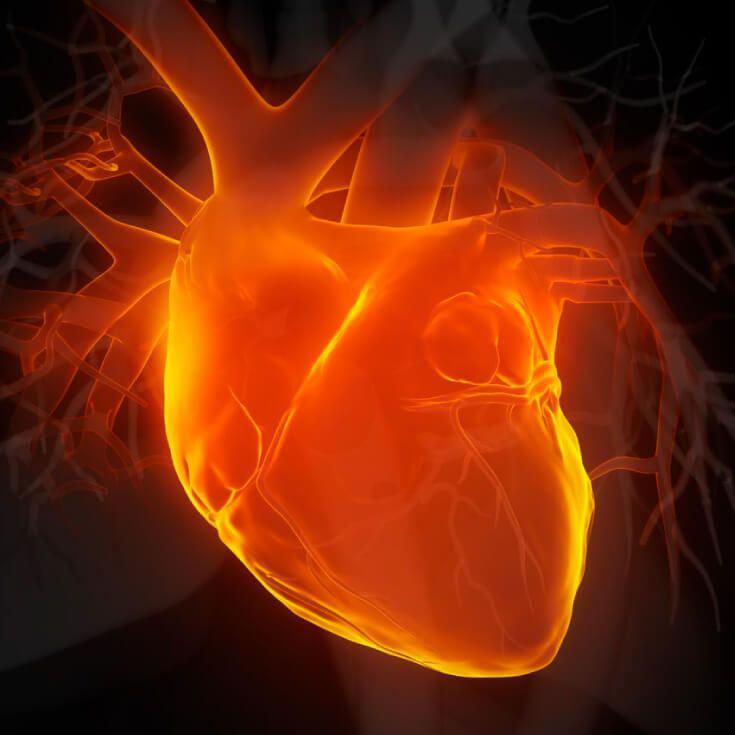 What High Triglycerides Mean for Your Heart