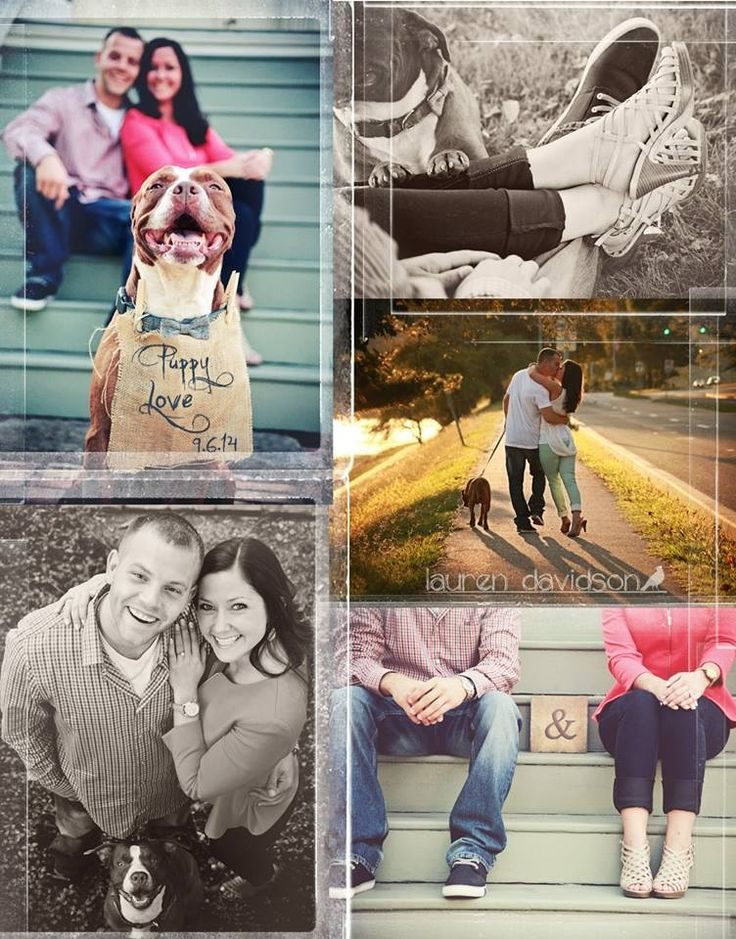 Shabby chic, vintage sunset engagement photos. Engagement pictures with dogs. Couples and their pets photos. Ideas for engagement photo session. Pre-wedding photo shoot. Unique engagement photos, unique camera angles, lace dress, photos in gardens. Lauren Davidson Photography.