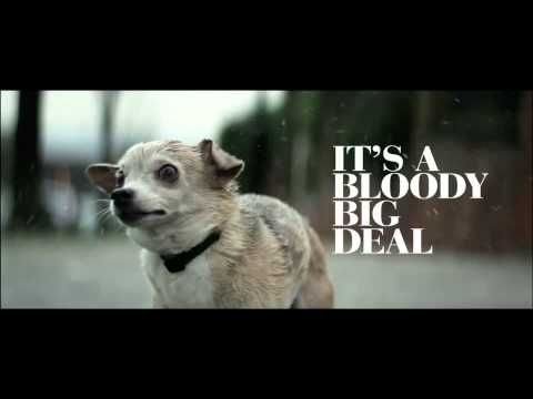 It's A Bloody Big Deal - YouTube