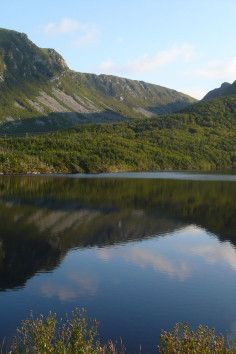 where the rugged, boreal coasts meets the North Atlantic.. Terra Nova National Park - Terra Nova National Park of Canada is a place where long fingers of the North Atlantic Ocean touch the island boreal forest of Eastern Newfoundland.