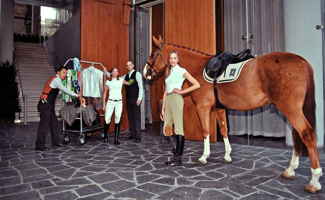 Éce Equestrian apparel - Tailored in Manhattan with super cooling, super flattering Aerocool fabric