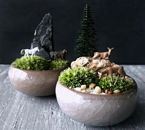 A tiny horse (or two) graze in a pasture of live moss against a rocky mountain backdrop. This tiny scene is inspired by the Japanese art of Kusamono (or shitakusa) meaning a potted collection of plants designed to be viewed either in accompaniment with bonsai or alone. Here fluffy mounds