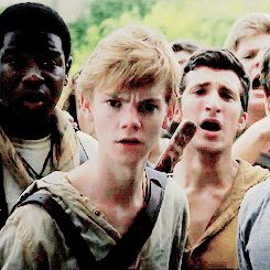 Imagine: You were stung by a griever and are being dragged back to the glade by Minho. Newt whisper y/n when he sees you limp in Minhos arms