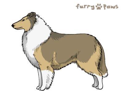 Furry Paws // WCH Kip's Coca Cola [Lla 2xStm 23HH - 1.467] 5.1's Kennel