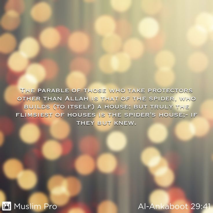 Zitat aus dem Heiligen Koran, Al-Ankaboot (29:41) #muslimpro http://www.muslimpro.com