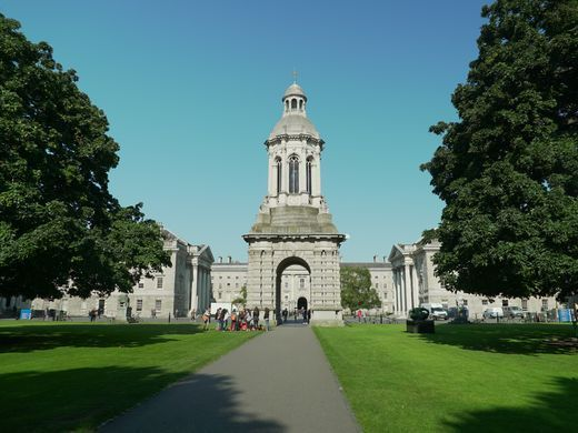 Trinity College Dublin was founded by Royal Charter