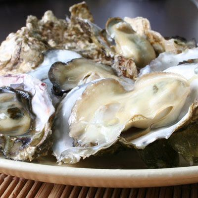 NOV-FEB京都久美浜湾の牡蠣(カキ)プランクトンが豊富な久美浜湾で育ったカキは肉厚で濃厚。うまみが増す冬、カキのフルコースやカニのコース料理の一品としてお楽しみください。