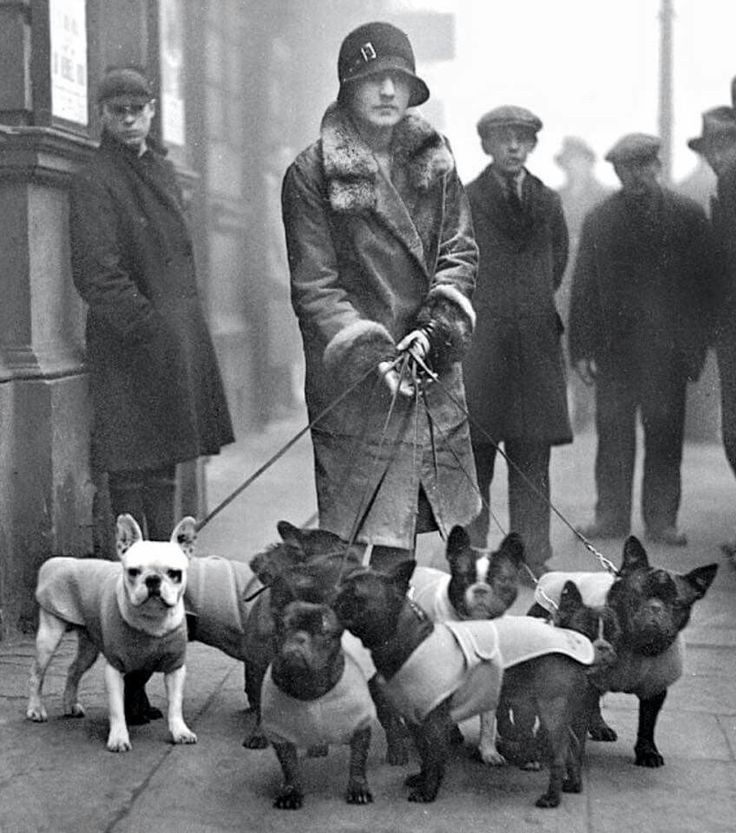 Mrs R.A. Hopwood with her dogs at the French Open Bulldog Show in London (1929). source: Getty. via retronaut on mashable