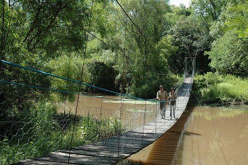 Puente colgante, Parque Nacional Chaco, #Argentina
