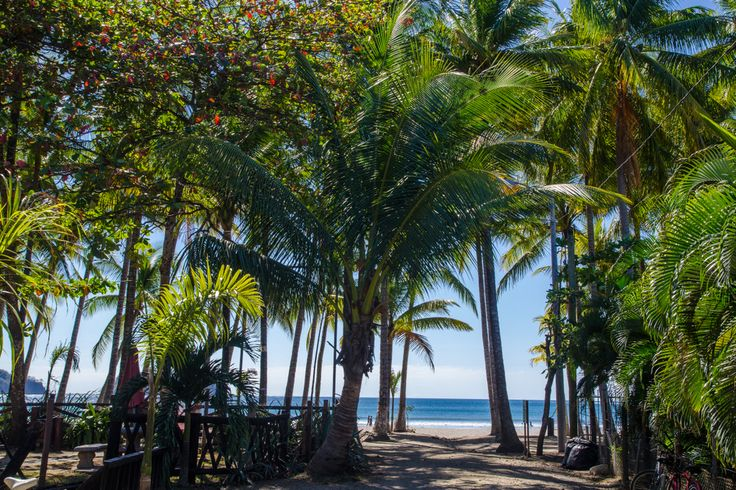 In Search of Perfect Beach Towns: Sámara, Costa Rica