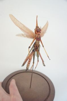 Fairy insect Art